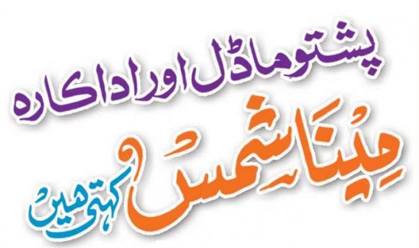Meena Shams