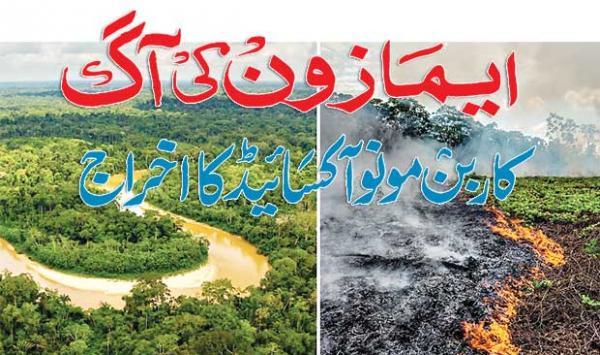 Amazons Fire Carbon Monoxide Emissions