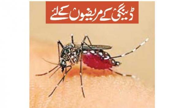For Dengue Patients