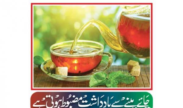 Drinking Tea Can Strengthen Memory