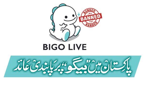 Begum Banned In Pakistan