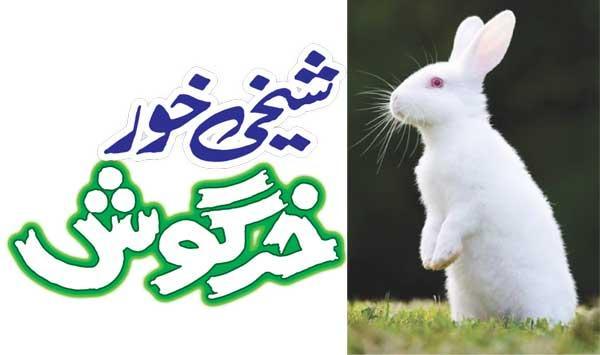 Boasting Rabbit