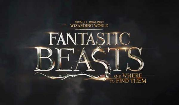 Production Of The Movie Fantastic Beasts Has Been Stopped