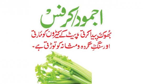 Celery Currants