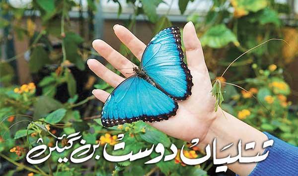 Butterflies Became Friends