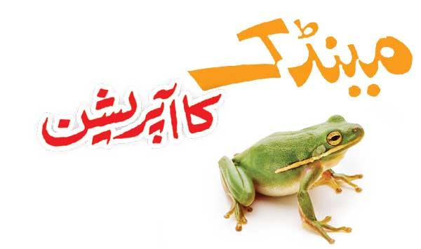 Frog Operation