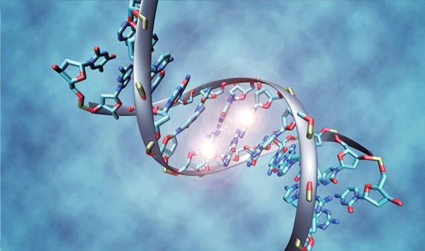 Successful Experiment Of Obtaining Human Dna From Air