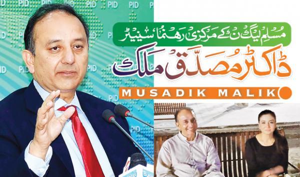 Pml N Central Leader Senator Dr Musaddiq Malik