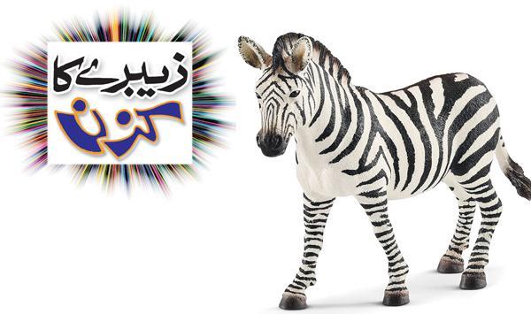 Zebras Cousin