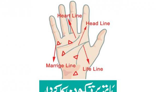 The Character Of The Triangle On The Hand