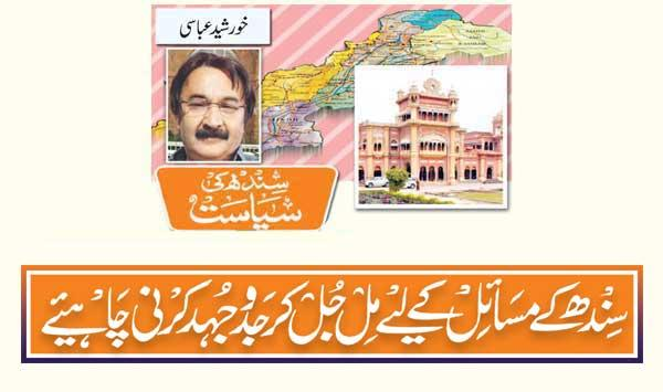 We Must Work Together For The Problems Of Sindh