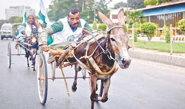 The Sindh Government Has Included The Donkey Cart Race In Cultural Sports